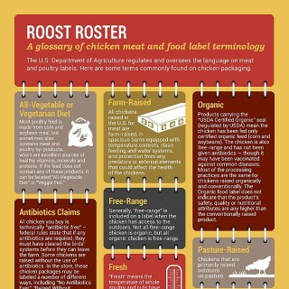 Chicken Label Terms Infographic